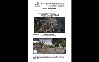 PCF Property Notice of Disposal